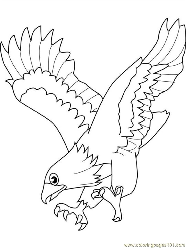Eagle4 coloring page free eagle coloring pages hawk pictures to print owl coloring pages eagle coloring page