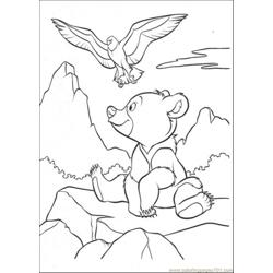 Bear And Eagle Coloring Page