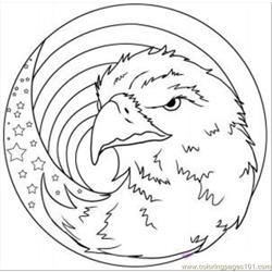 Draw An American Eagle Step 7