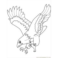 Eagle4 coloring page