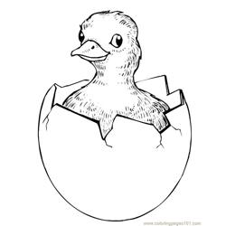 Easter chick hatching Free Coloring Page for Kids