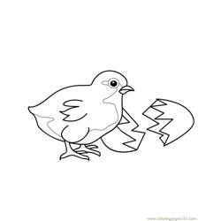 Easter chick Free Coloring Page for Kids