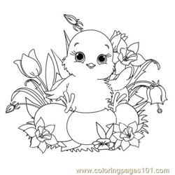 Babby easter chick Free Coloring Page for Kids