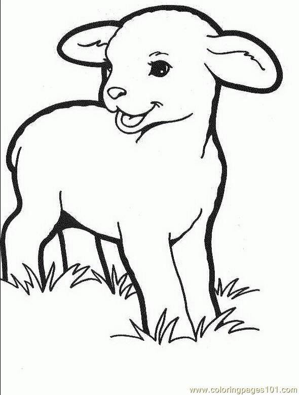 lambs son coloring page free easter lambs coloring pages
