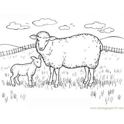 Lambs calf in jungle Free Coloring Page for Kids