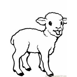 Lambs Free Coloring Page for Kids