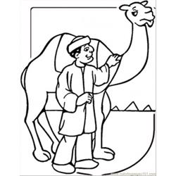 Camel And Egyptian Man