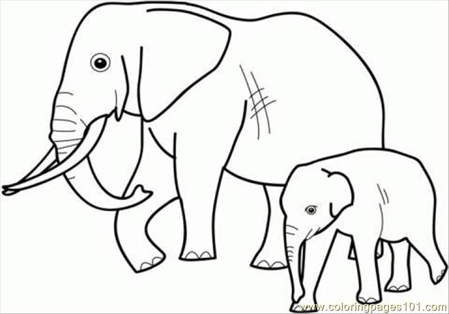 Nice Elephant Family Coloring Page