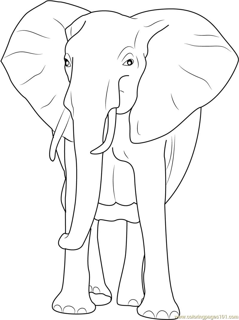 Coloring Pages African Elephant Coloring Page african bush elephant coloring page free pages page
