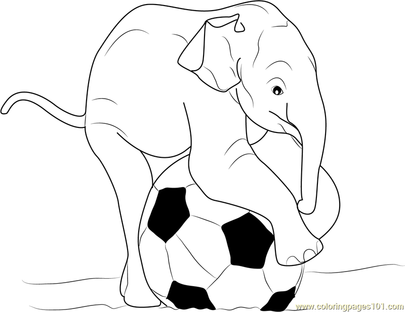 Baby Elephant Playing Ball Coloring Page
