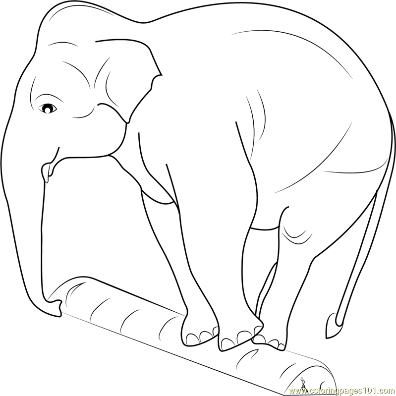 Elephant Balancing on a Log Coloring Page