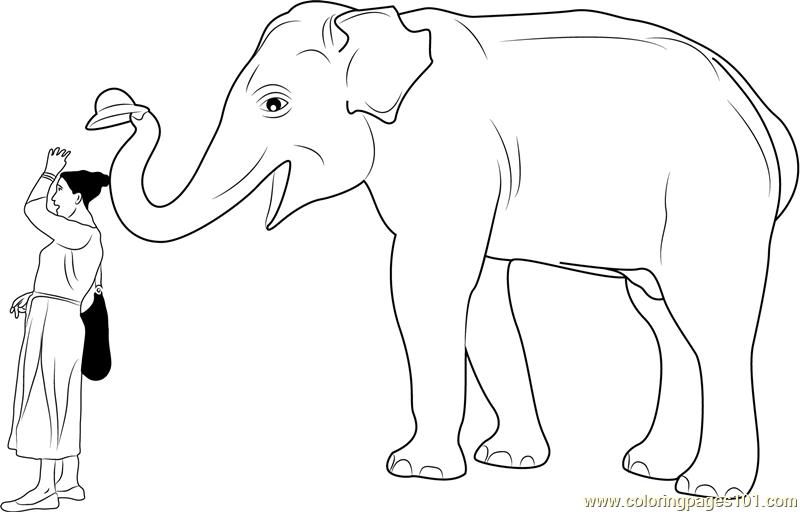 Elephant Hat Lady Coloring Page