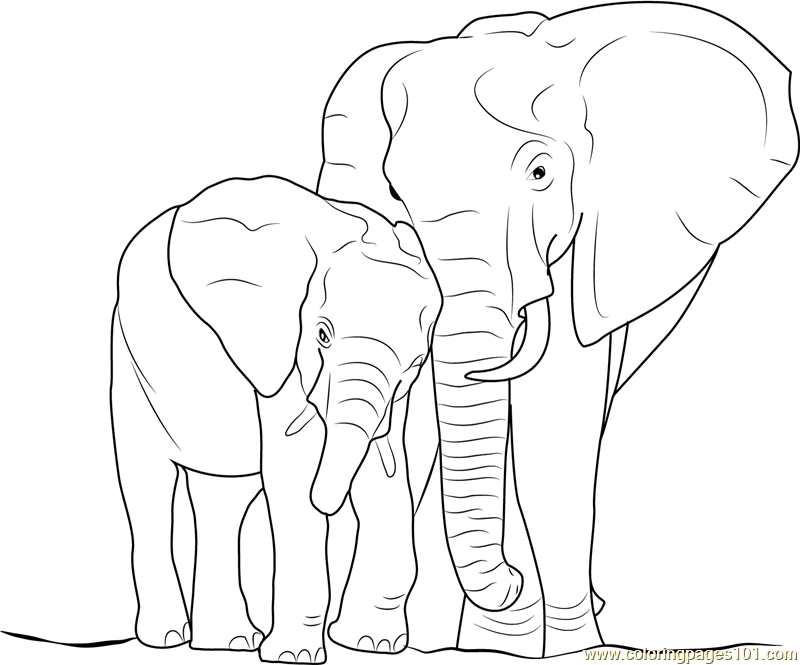 Elephant with Baby Coloring Page Free Elephant Coloring Pages
