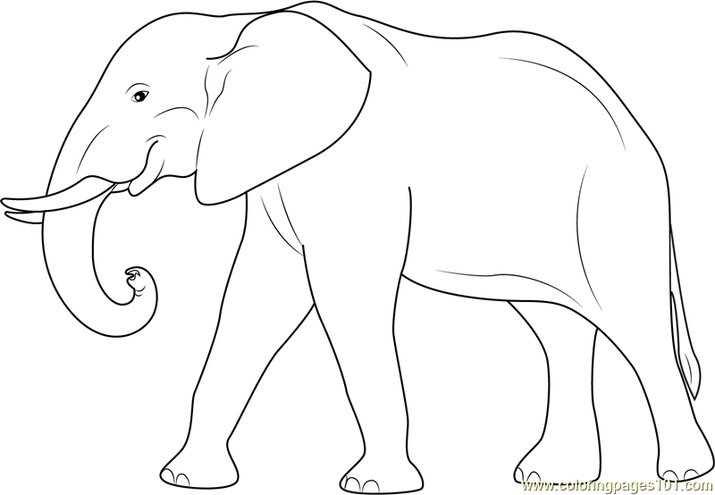 Elephant Coloring Page Free Elephant Coloring Pages - Coloring-pages-elephants