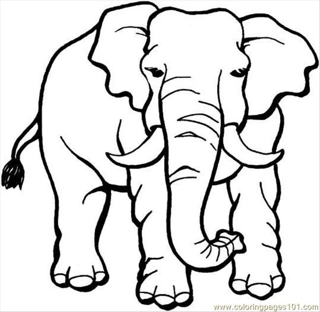 Elephant 18 Coloring Page Coloring Page