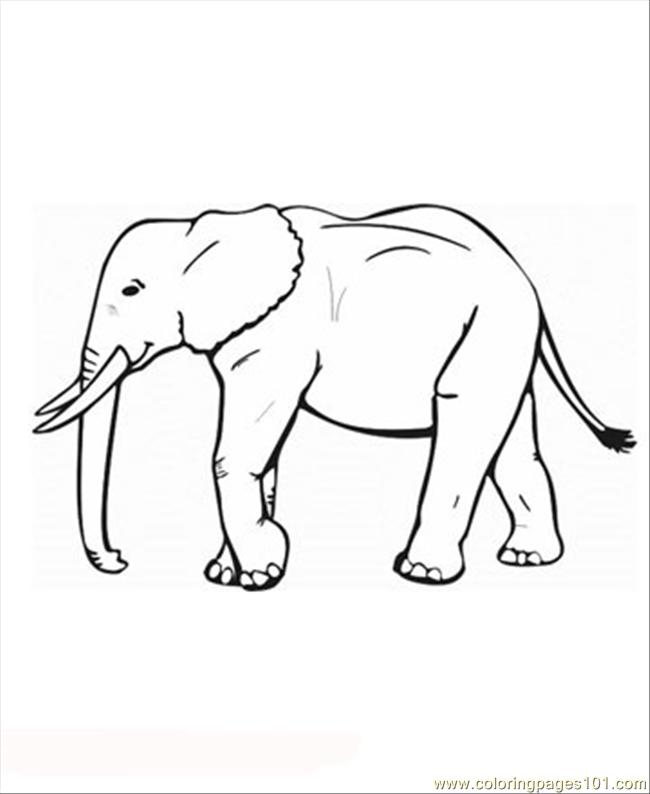 Elephant5 Coloring Page