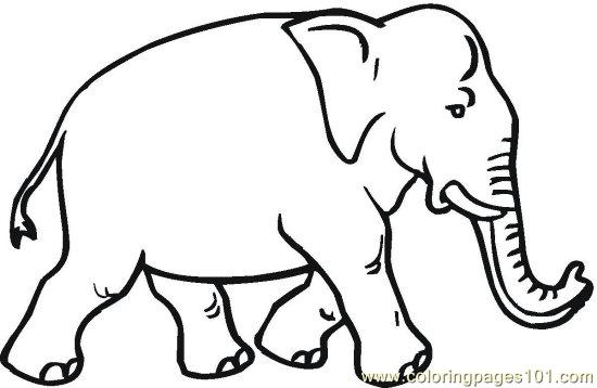 elephant 11 printable coloring page for kids and adults