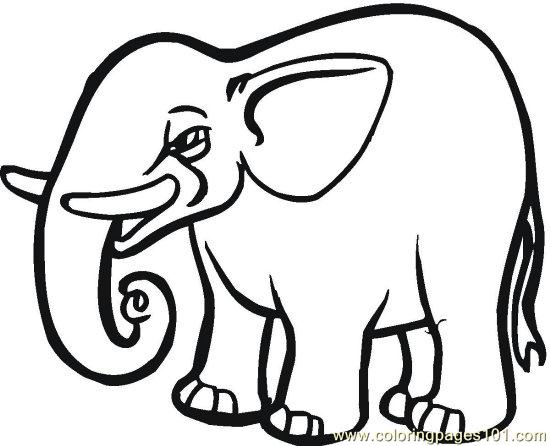 Elephant 13 Coloring Page Free