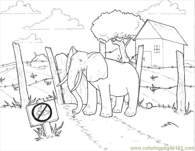 Elephant Coloring Page 3 Download