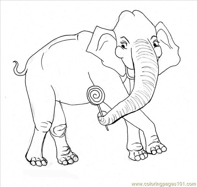Elephant Coloring Page Coloring Page