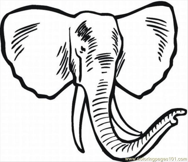 Elephant Coloring Pages 6 Lrg Coloring Page