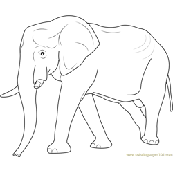 Big Elephant Walking Free Coloring Page for Kids