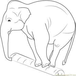 Elephant Balancing on a Log Free Coloring Page for Kids