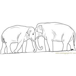 Elephant Fighting Free Coloring Page for Kids