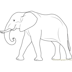 Elephant Free Coloring Page for Kids