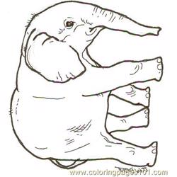 Baby Elephant Reversed Free Coloring Page for Kids