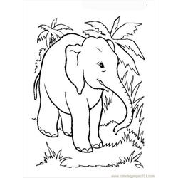 Elephant Coloring Page 12