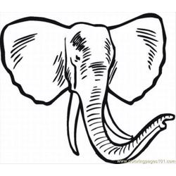 Elephant Coloring Pages 6 Lrg