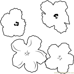Flowers by Andy Warhol Free Coloring Page for Kids