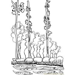 Poplar Free Coloring Page for Kids