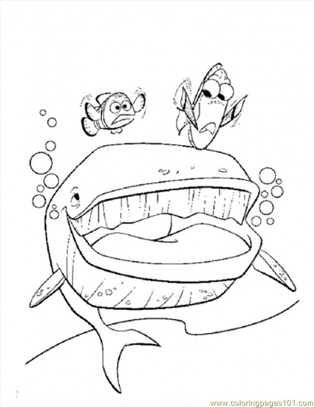 Nemo Coloring Pages Pdf : The whale coloring page free finding nemo pages