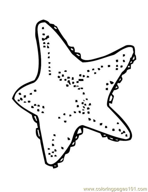 Animal Sea Star Fish Coloring Page