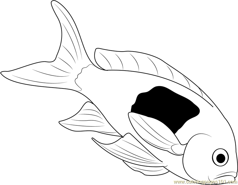 Dead Fish Coloring Page