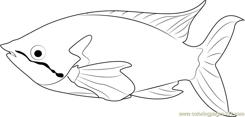 Rainbow Fish Coloring Page Free Other Fish Coloring Pages