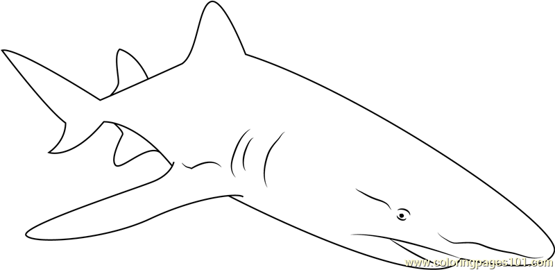 Sharks With Lasers Coloring Page