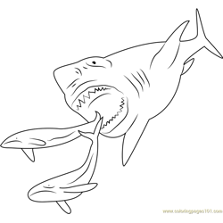 Megalodon Shark Free Coloring Page for Kids