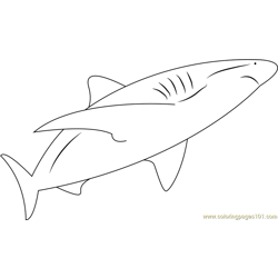 Rainer Schimpf Shark Free Coloring Page for Kids