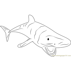 Shark At Look Free Coloring Page for Kids