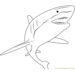 Shark Attack Free Coloring Page for Kids