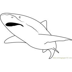 Shark See Free Coloring Page for Kids
