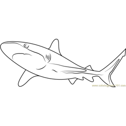 Shark Free Coloring Page for Kids