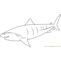 Tiger Shark Underwater Free Coloring Page for Kids