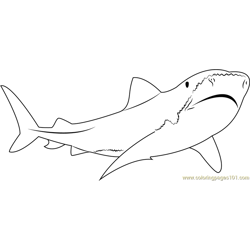 Tiger Shark Free Coloring Page for Kids