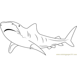 Tiger shark Migration Free Coloring Page for Kids