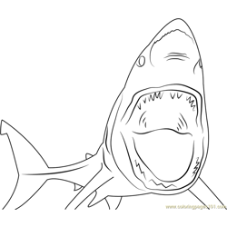 Waking Shark Free Coloring Page for Kids