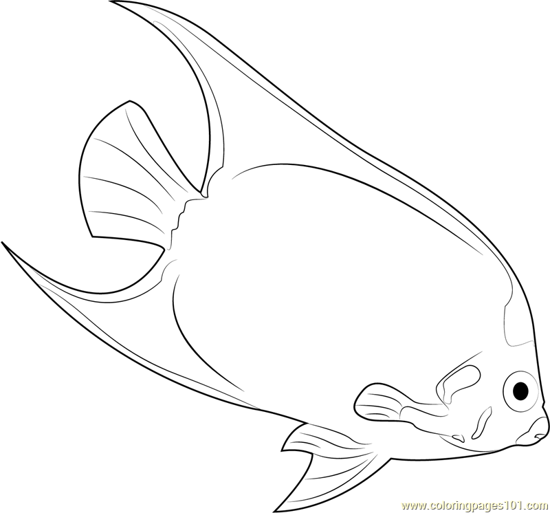 Yellow Mask Angelfish Coloring Page